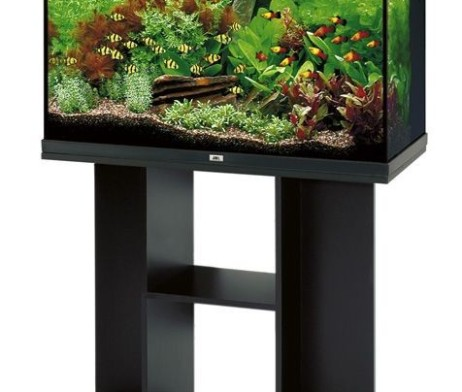 juwel aquarium rio 125 schwarz 125 l schrank 835sb g nstig kaufen im koi shop. Black Bedroom Furniture Sets. Home Design Ideas
