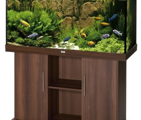 juwel aquarium rio 300 dunkel braun 350l ohne schrank g nstig kaufen im koi shop. Black Bedroom Furniture Sets. Home Design Ideas