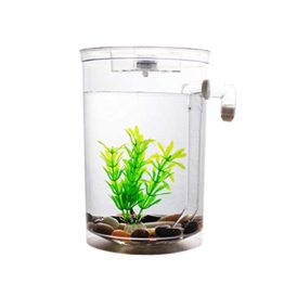 Selbstreinigendes Mini-Aquarium-Set von Bayrick + LED-Lampe Gravity Clean - 1