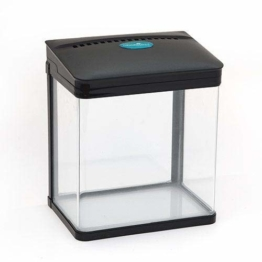 allpondsolutions Nano Tropisches Aquarium, 7 Liter, LED-Licht/Filter, Schwarz - 1